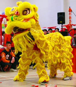 The lion Dance delighted those attending the Chinese New Year carnival.