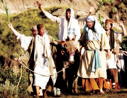 Look, your king is coming sitting on a donkey's colt. -- John 12.15