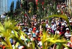Christians wave palm branches during a Palm Sunday procession on the Mount of Olives in Jerusalem last year.