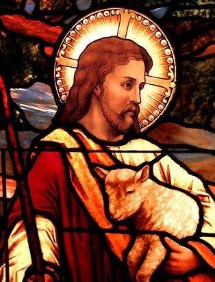 Jesus, the good shepherd, came to bring us abundant life, life in its fullness