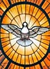 Holy Spirit Graphic